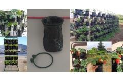 Vrećica za vertikalni uzgoj 10/1   CH60720